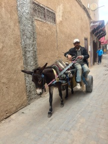 Transportmittel in der Medina