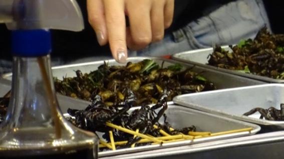 Mhmhmh...some yummy scorpions