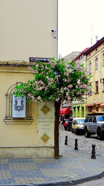 City details Lviv